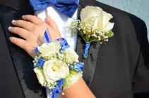 Roses and Blue