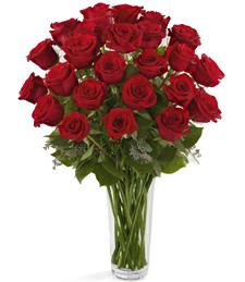 Roses and Romance Rose Arrangement in Longview, TX | HAMILL'S FLORIST