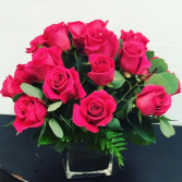 Roses  Cube Hot pink roses