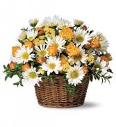 Roses & Daisies Arranged Fresh Arrangement