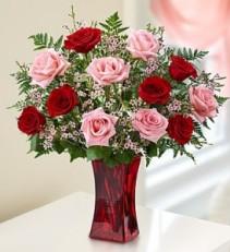Roses Dozen Roses