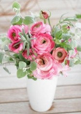 Love you Ranunculus pink