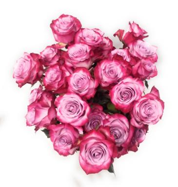 Roses Galore Wrap arrangement