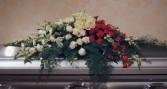 Roses, Hydrangeas & Carnations