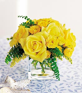 Yellow Roses Cubed