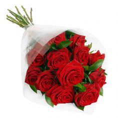 Roses - One Doz wrapped Roses
