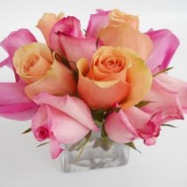 Roses  Pink and Peach Rose Arrangement