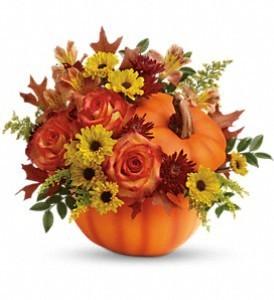 Roses & Pumpkin Fall Bouquet in Whitesboro, NY | KOWALSKI FLOWERS INC.