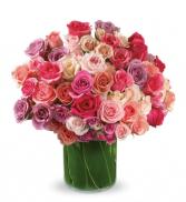 Roses Raptured