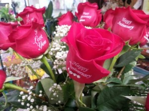 Roses  Imprinted with your greetings! in Albany, NY | CENTRAL FLORIST
