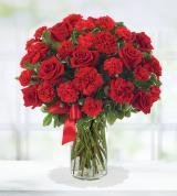 Roses v.s. Carns