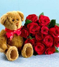 Roses Wih Teddy Bear