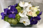 Centerpiece (white & purple) Rosh Hashanah (white & cream)