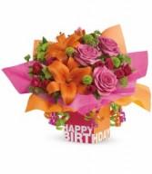 Rosy Birthday Present H201A