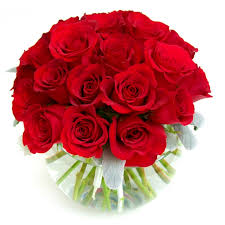 Rouge Balle 24 cut red roses