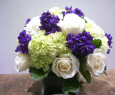 3 Color Arrangements Custom