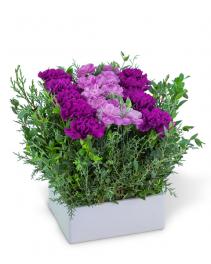 Royal Forest Pave Flower Arrangement