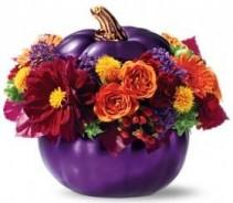 Royal Pumpkin Bouquet