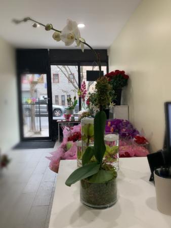 Royal white orchid arrangement