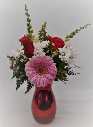Ruby Red Valentine's Day in East Templeton, MA | Valley Florist & Greenhouse