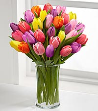 Rush of Color Tulip Bouquet Spring Flowers