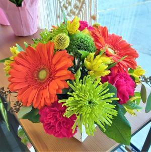 Hello Gorgeous Arrangement in Saskatoon, SK | QUINN & KIM'S FLOWERS