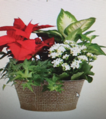 rustic christmas planter