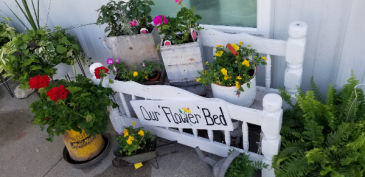 Rustic garden planters Fresh plants in country containers