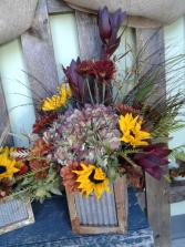 Rustic Ranch Harvest Heartland Series