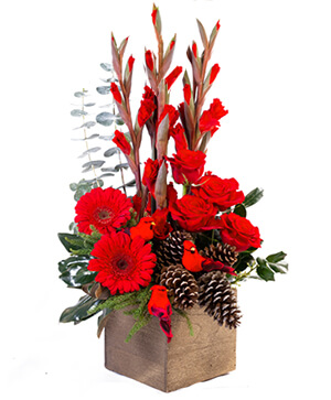 Rustic Red Christmas Flower Arrangement in Pacific City, OR | CAPTAIN'S FLOWERS & GIFTS