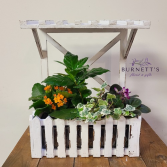 Rustic Window box Planter