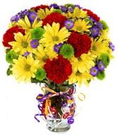 s09 Birthday Flowers
