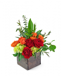 Sahara Bliss Flower Arrangement