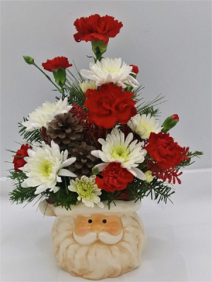 Santa  Floral Arrangement in Presque Isle, ME | COOK FLORIST, INC.
