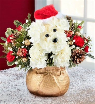 Santa Paws and His Sack! Best Gift for Any Dog Lover!