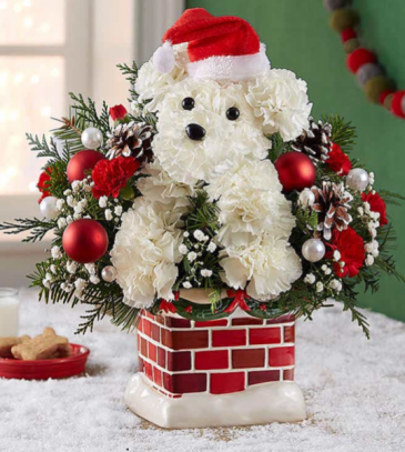 Santa Paws by 1800Flowers