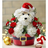 Santa Paws Christmas Arrangement