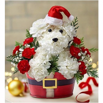 Santa Paws Christmas Arrangement
