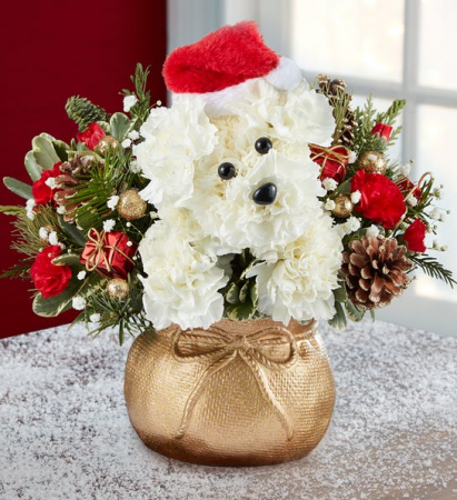 Santa Paws™ Christmas Arrangement