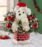 Santa Paws Fresh Christmas Arrangement