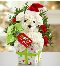 Santa Paws™ in a Gift Box Arrangement