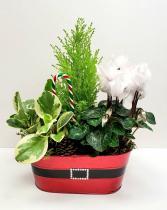Santa Planter Medium planter