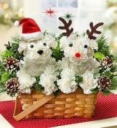 Santa & Rudolph a-DOG-able