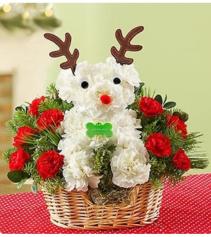 Santa's Best Reindeer™ Arrangement