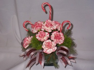 Santa's Candy Cane Lane - Christmas Flowers Christmas Carnations Arrangements with Candy Canes, Christmas Centerpiece Arrangements, Christmas Roses, Christmas Flowers