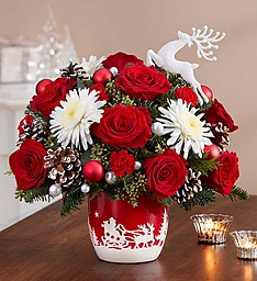 Santa's Sleigh Ride, Arrangement In Keepsake Bowl in Gainesville, FL | PRANGE'S FLORIST