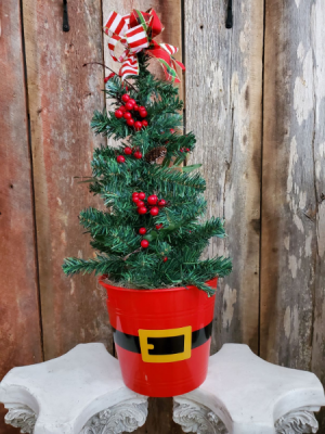 Santa's Surprise Christmas Tree Flowers in Eupora, MS | SARA'S FLOWERS AND GIFTS