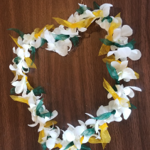 School Spirit Lei