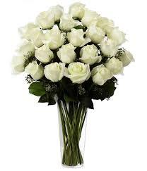 Sea of White Roses