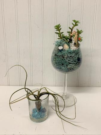 Seascape Succulents/set of 2